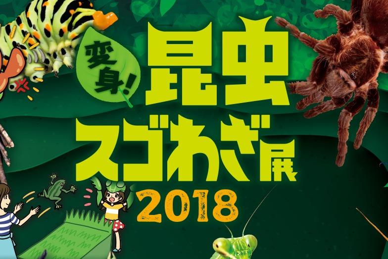 変身!昆虫スゴわざ展2018行ってきた!【混雑具合、時間、詳しい場所のまとめ】